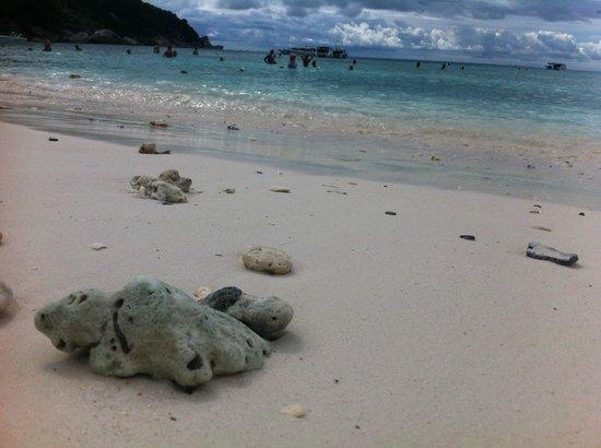 Similan Islands : beach