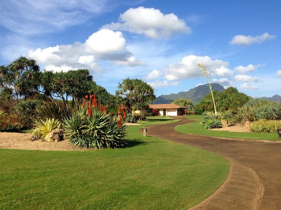 Poipu Bay Resort Golf Course: Manicured course on the ocean