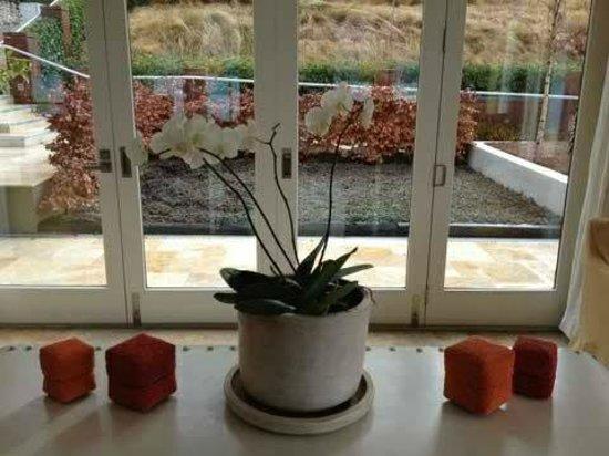 Matakauri Lodge: Lobby Plant