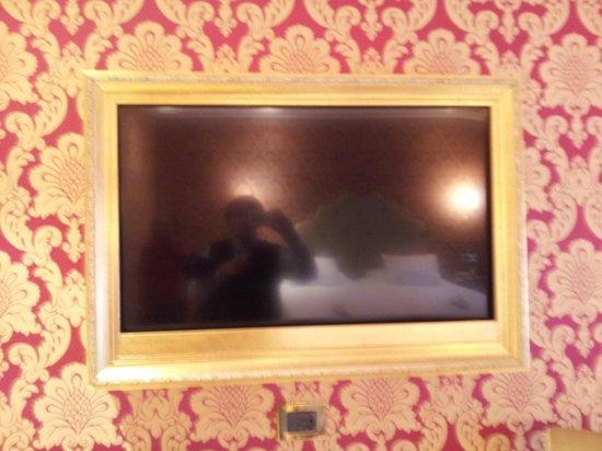 Hotel Ai Reali di Venezia: led tv