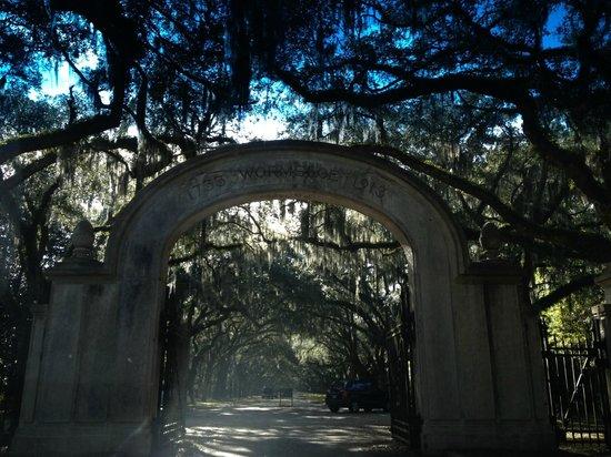 Wormsloe Historic Site : entrance