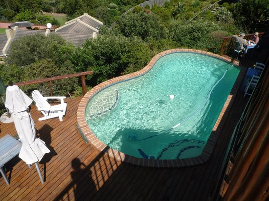 Amblewood Guest House: The pool...
