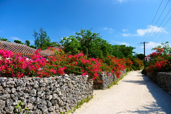 Okinawa Prefecture, Japan: taketomi island