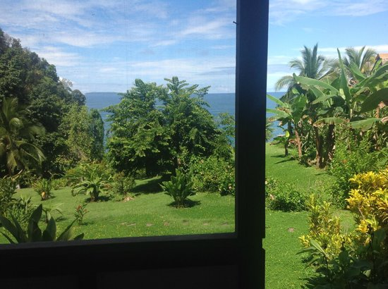 Campanario Biological Station: View from Cabin