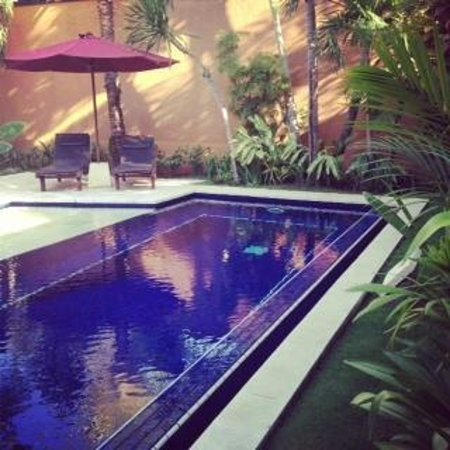 The Kunja Villas & Spa: Swimming pool