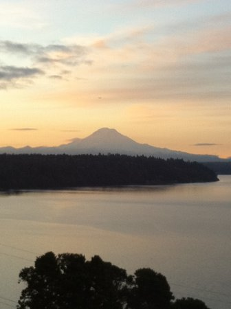 Three Tree Point Bed and Breakfast : View of Mount Rainier from B&B