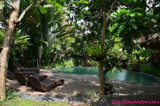 Pondok Pisces Bungalows: la piscine dédiée aux bungalows