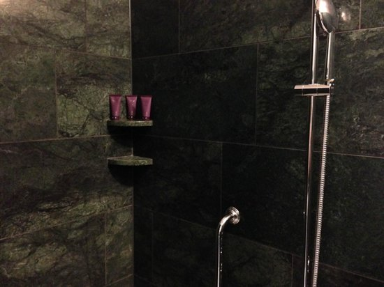 The Ritz-Carlton, Vienna: Shower