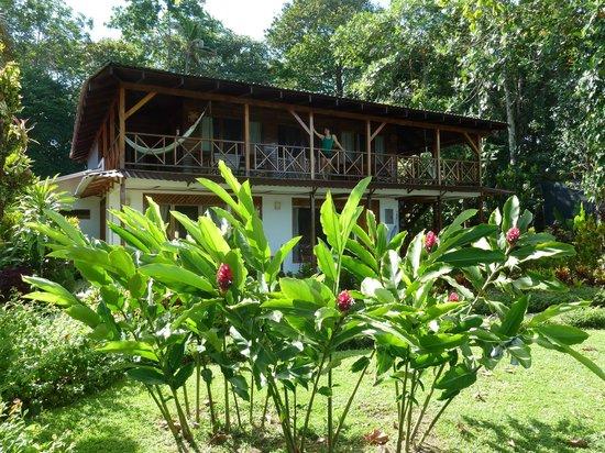 Tortuga Lodge & Gardens: La chambre
