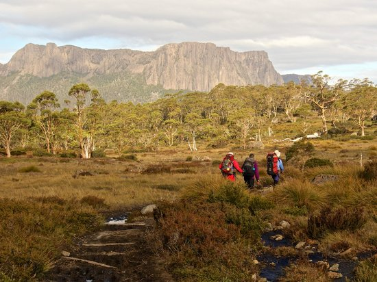 Cradle Mountain Huts: Day 4