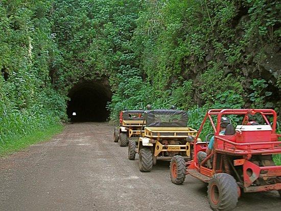 Kauai ATV Tours: Travel through Kauai's only off-road tunnel