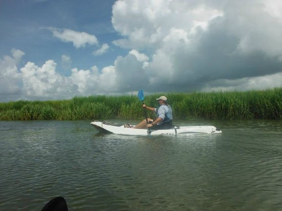 Sea Pines Resort: kayaking in estuary
