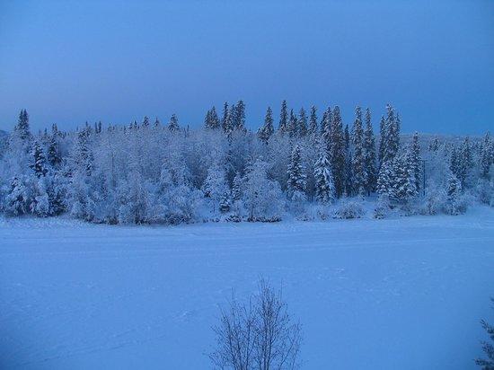 Fairbanks Princess Riverside Lodge: View from room2