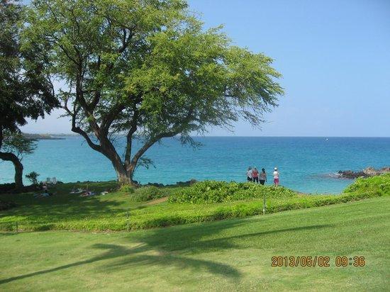 Hapuna Beach Prince Hotel: シュノーケル向きの入り江