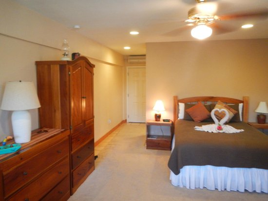 Iguana Reef Inn: Room