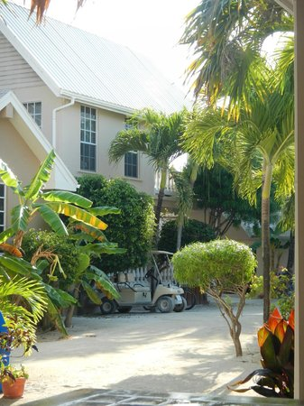 Iguana Reef Inn: Out of front office