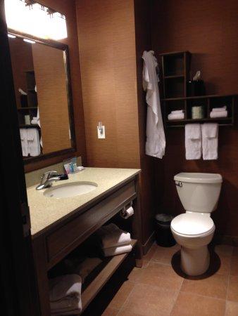 Hampton Inn & Suites Springdale Zion National Park : Bathroom