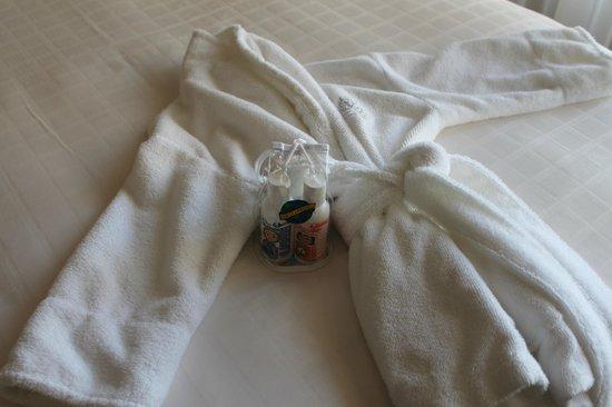 Four Seasons Hotel Chicago : Children's Robe and Toilettries