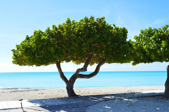 Cape Santa Maria Beach Resort & Villas: Outside room #2