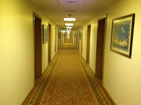 Copthorne Airport Hotel Dubai: hotel corridor leading to my room