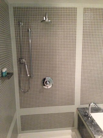 W Washington D.C.: Shower/ Tub in Suite