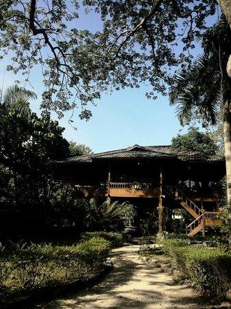 Pulau Bidadari Resort: Bangau cottage at the morning