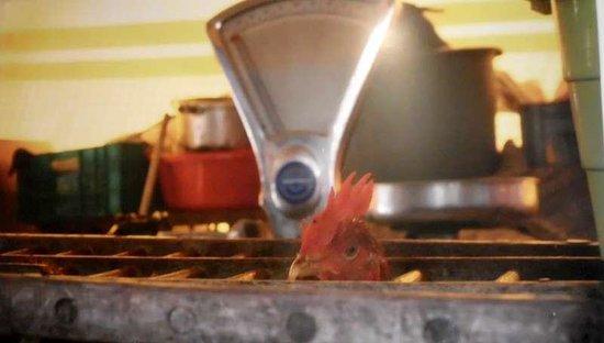 een foto in kok au vin