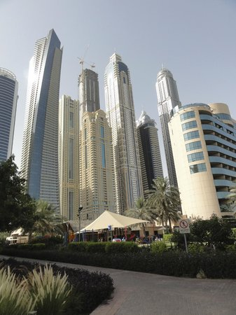 The Westin Dubai Mina Seyahi Beach Resort & Marina : View from near the pool