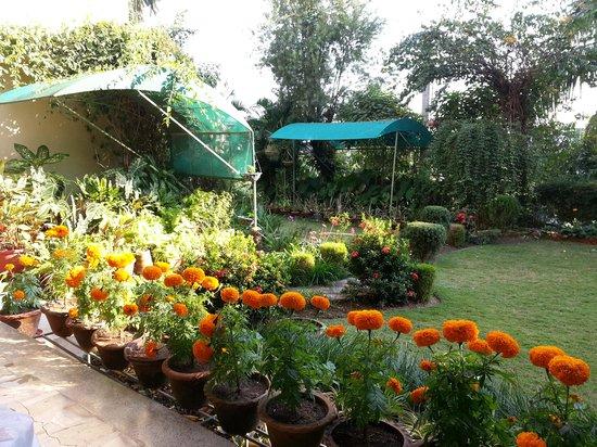 Prabhakar Homestay: Part of the serene garden...