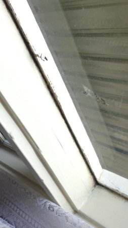Parkway Motel: Mould covered window sill
