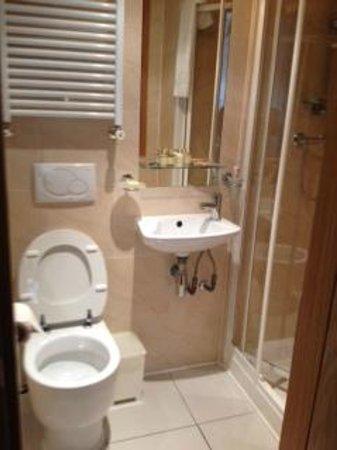 Studios2Let Serviced Apartments - Cartwright Gardens: sdb