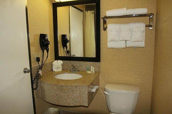 Comfort Inn Near Grand Canyon: ванная комната