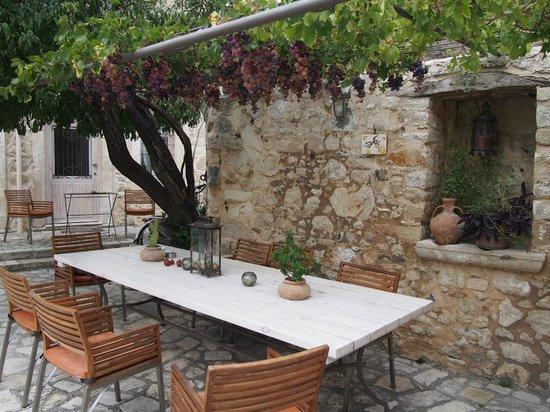 Villa Kerasia : Picture perfect grapes