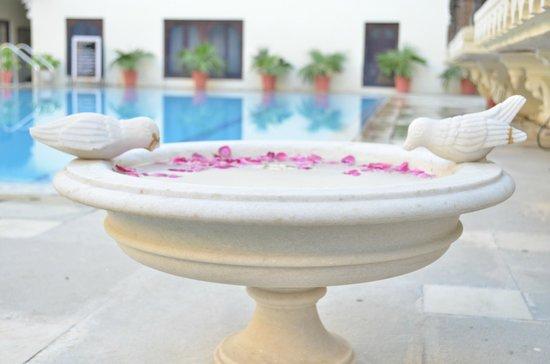 Hotel Mahendra Prakash: pool