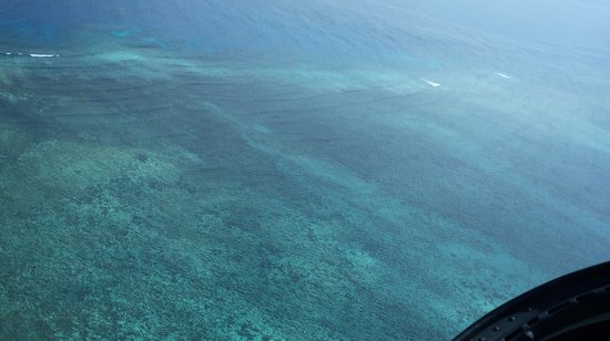 Hilton Cairns: great barrier reef from the helicopter