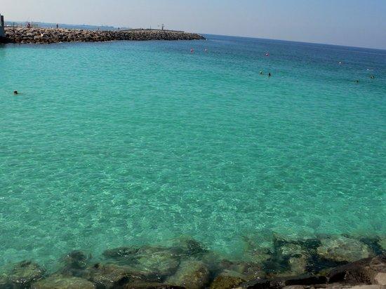 Dubai Marine Beach Resort and Spa : spiaggia