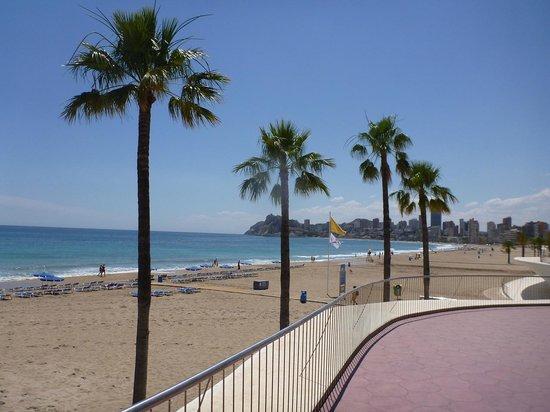 Hotel RH Corona del Mar: Beach