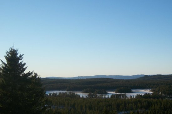 Orsa Bjornpark: view from the top of the hill
