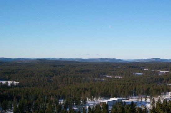 Orsa Bjornpark: view around