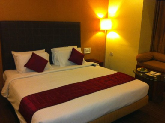 Hotel Dee Cee Manor: Executive Room