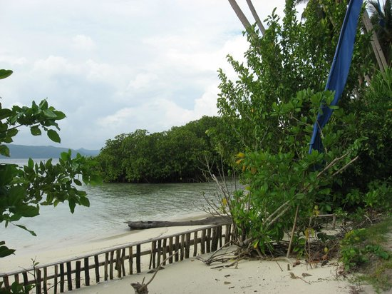 Raja Ampat Dive Resort: Blick vor dem Bungalow