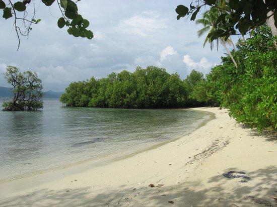 Raja Ampat Dive Resort: der Weg vor den Bungalows
