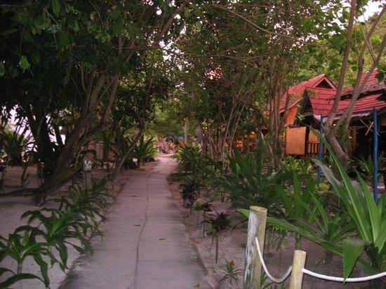 Raja Ampat Dive Resort: Der Weg zur Tauchbasis