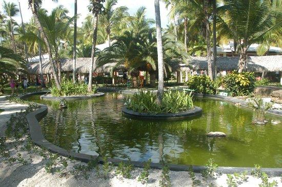 Grand Palladium Bavaro Suites Resort & Spa : Gelegen im tropischen Park in unmittelbarer Strandnähe
