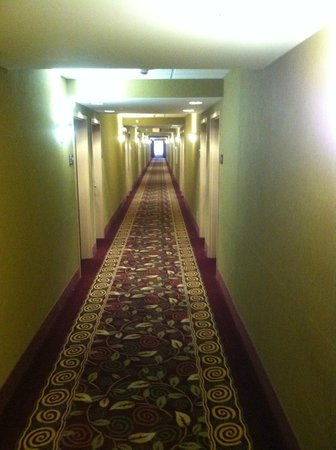 Hampton Inn & Suites - Opelika: Hallways