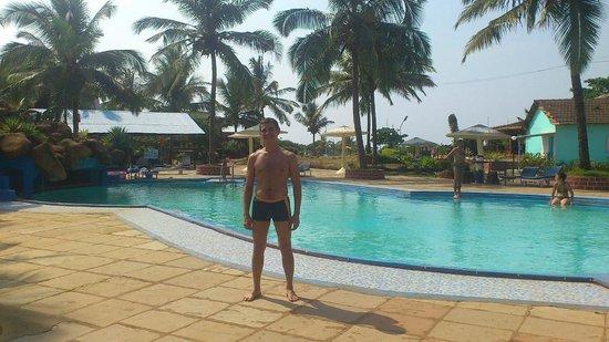 Paradise Village Beach Resort: бассейн при отеле