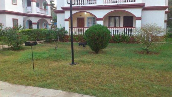 Paradise Village Beach Resort: территория отеля с представителями местной фауны (вид из номера)