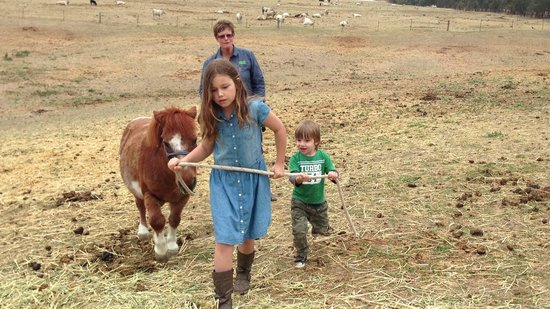 Barcoos Farmstays Bathurst: Revelling in the little responsibilities given to them