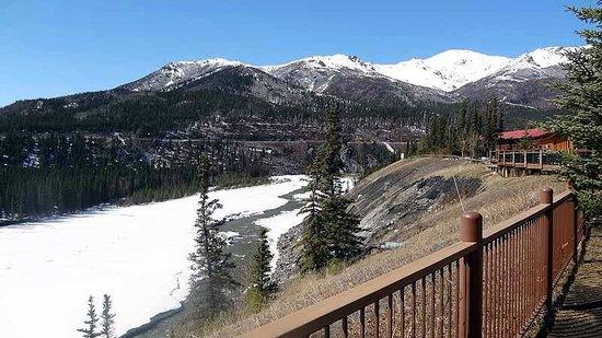 Denali Princess Wilderness Lodge : View