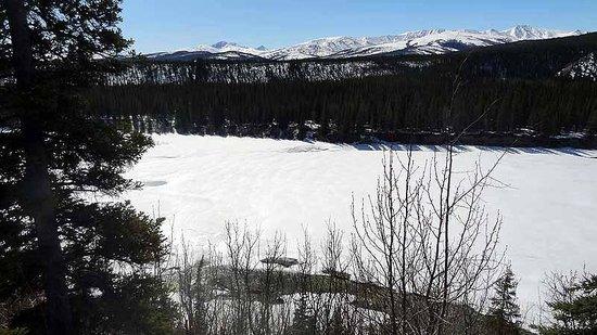 Denali Princess Wilderness Lodge: View